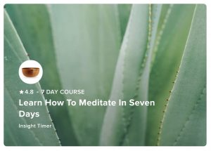 Learn to meditate with this free 7 day course.