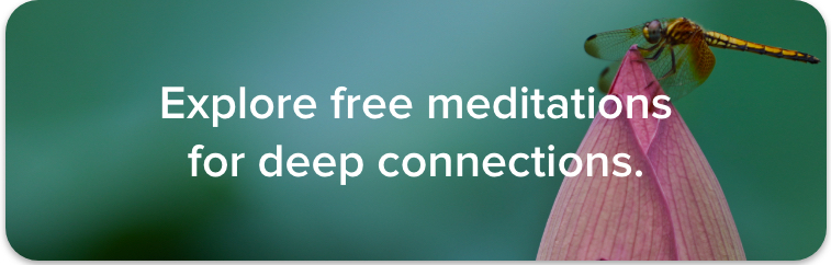 Browse hundreds of guided meditations for connection.