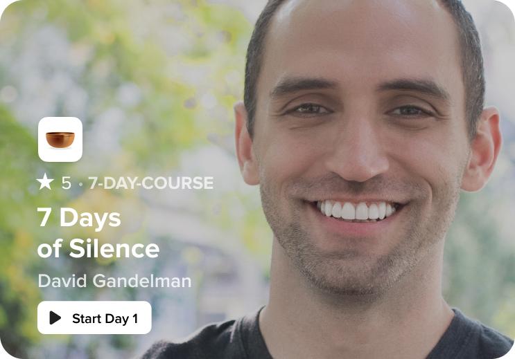 7 days of silent meditation